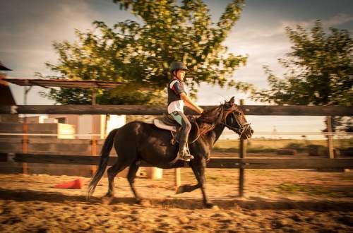 centre equestre anduze